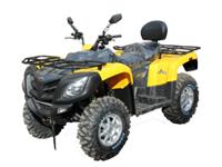 Купить квадроцикл Stels ATV 800GT max